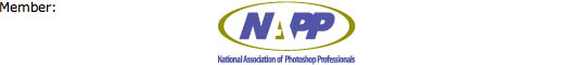 http://www.inkspotdesigns.com/graphics_(ModelMayhem)/NAPP_Logo_band.jpg