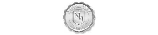 http://www.inkspotdesigns.com/graphics_(ModelMayhem)/potdmetal-profile_silver.jpg
